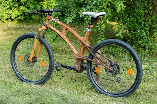 woodcompositbicycle.jpg