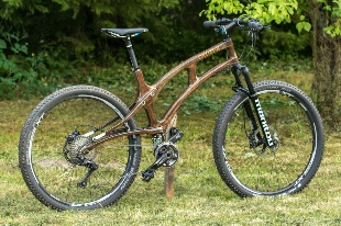 woodcompositbike.jpg